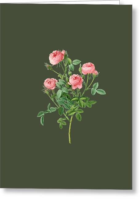 Bonnie Rose Art Greeting Cards - Rose12 Greeting Card by The one eyed Raven