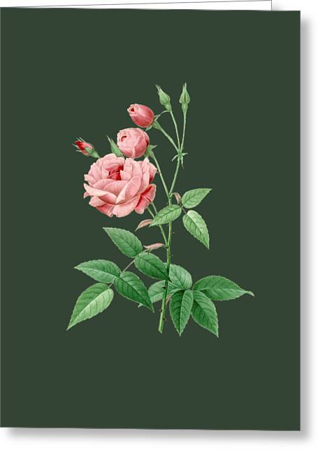Bonnie Rose Art Greeting Cards - Rose18 Greeting Card by The one eyed Raven