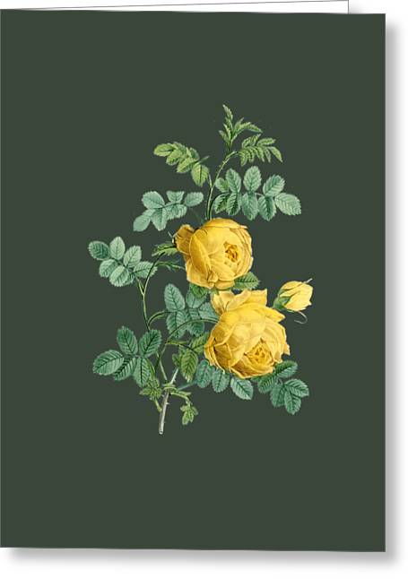 Bonnie Rose Art Greeting Cards - Rose3 Greeting Card by The one eyed Raven