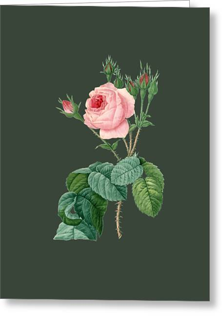Bonnie Rose Art Greeting Cards - Rose7 Greeting Card by The one eyed Raven