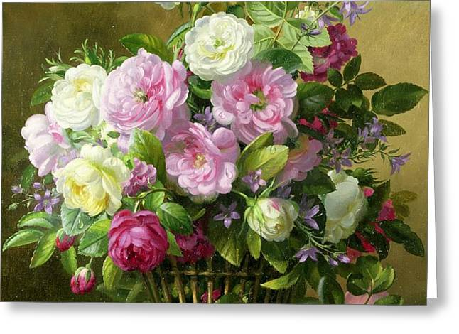 Roses  Greeting Card by Albert Williams