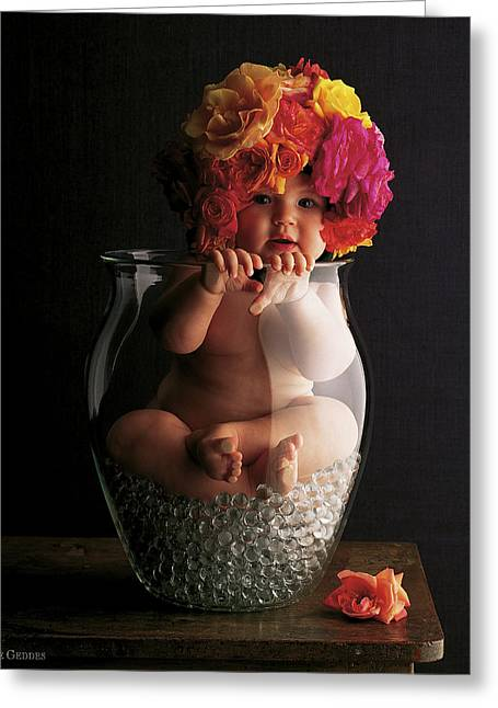 Flowers Greeting Cards - Roses Greeting Card by Anne Geddes
