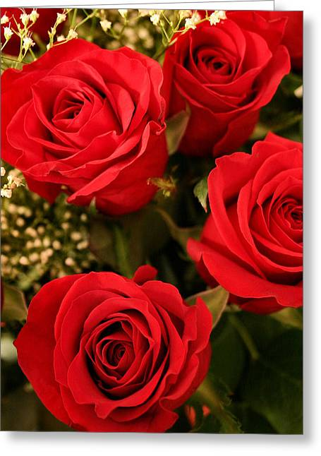 Babies Breath Greeting Cards - Roses are Red Greeting Card by Kristin Elmquist