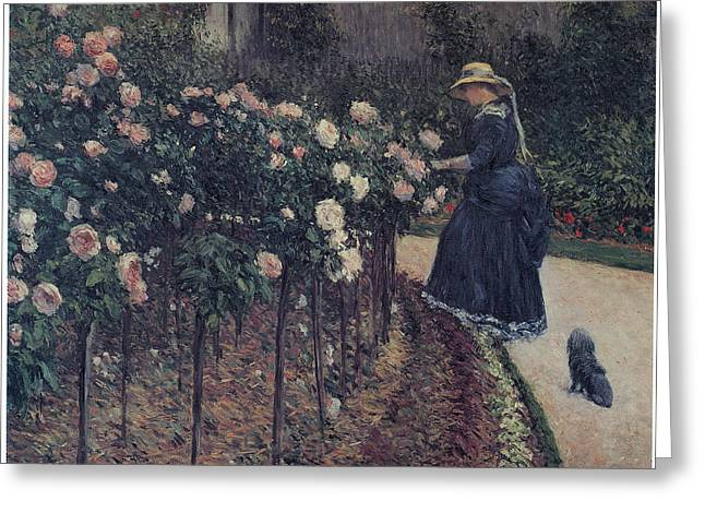 Gennevilliers Greeting Cards - Roses Garden at Petit Gennevilliers Greeting Card by Gustave Caillebotte