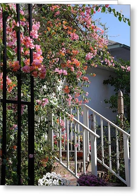 Roses In Winter Greeting Card by Susanne Van Hulst