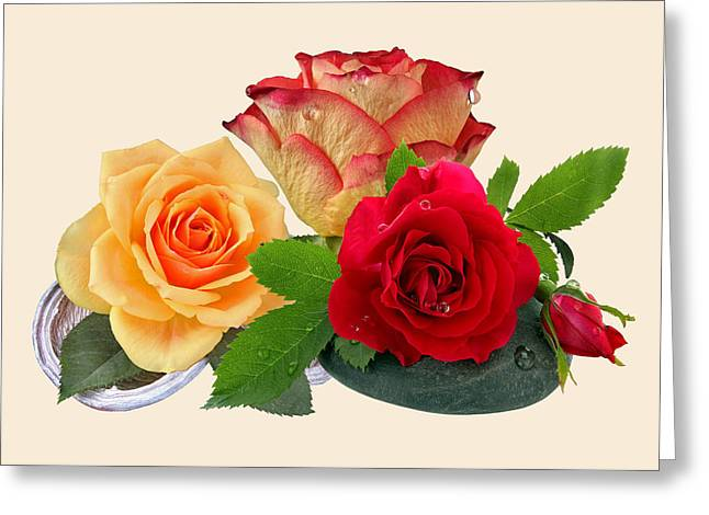 Ston Greeting Cards - Roses Greeting Card by Manfred Lutzius