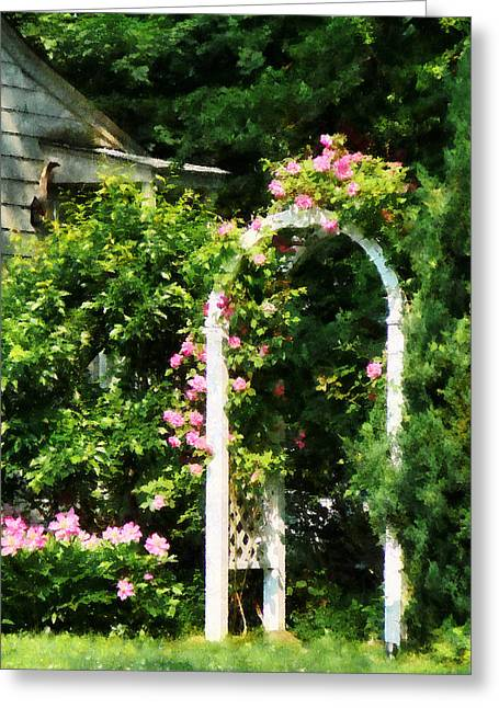 Trellis Greeting Cards - Roses On Trellis Greeting Card by Susan Savad