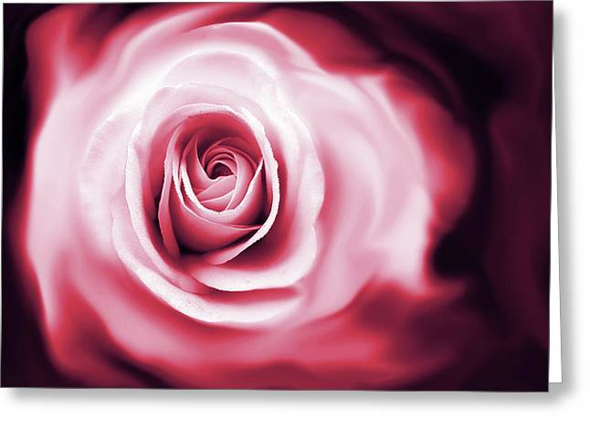 Abstract Rose Abstract Greeting Cards - Roses Whispers Magenta  Greeting Card by Jennie Marie Schell