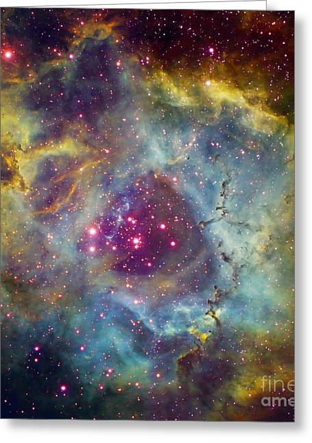 Starbirth Greeting Cards - Rosette Nebula Ngc 2244 In Monoceros Greeting Card by Filipe Alves