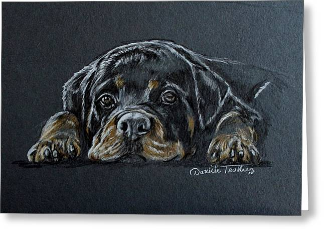 Rottweiler Puppy Greeting Cards - Rottweiler Greeting Card by Daniele Trottier