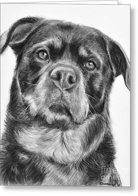 Working Dog Greeting Cards - Rottweiler Drawing titled Mama Greeting Card by Kate Sumners