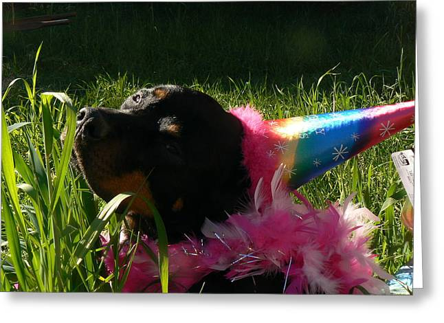 Best Sellers -  - Party Invite Greeting Cards - Rottweiler Princess Greeting Card by Kathryn Carlin
