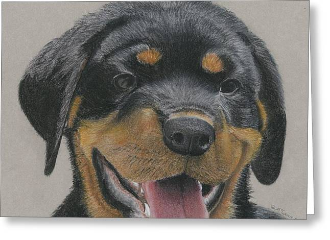 Puppies Drawings Greeting Cards - Rottweiler Puppy Greeting Card by Gordon McCann