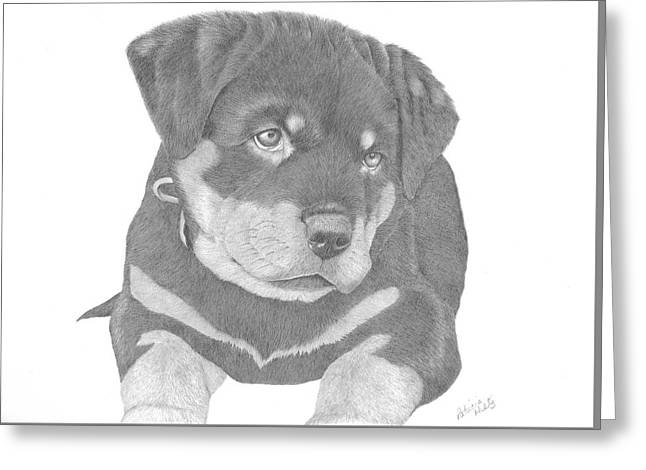 Puppies Drawings Greeting Cards - Rottweiler Puppy Greeting Card by Patricia Hiltz