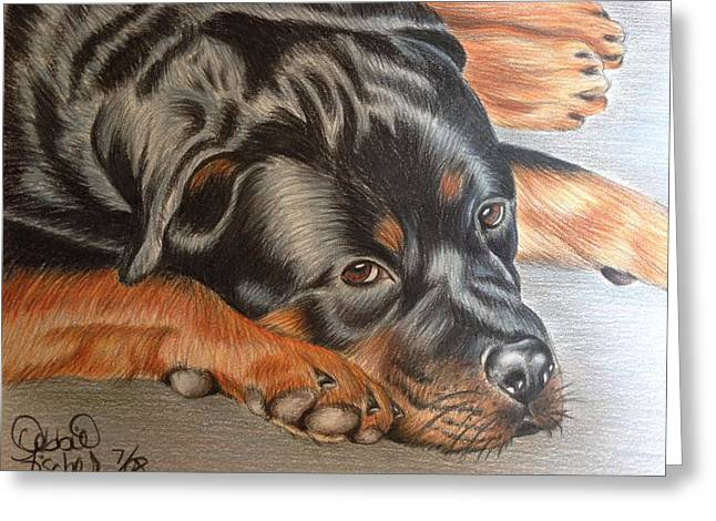 Puppies Drawings Greeting Cards - Rotty Greeting Card by Debbie Fischer