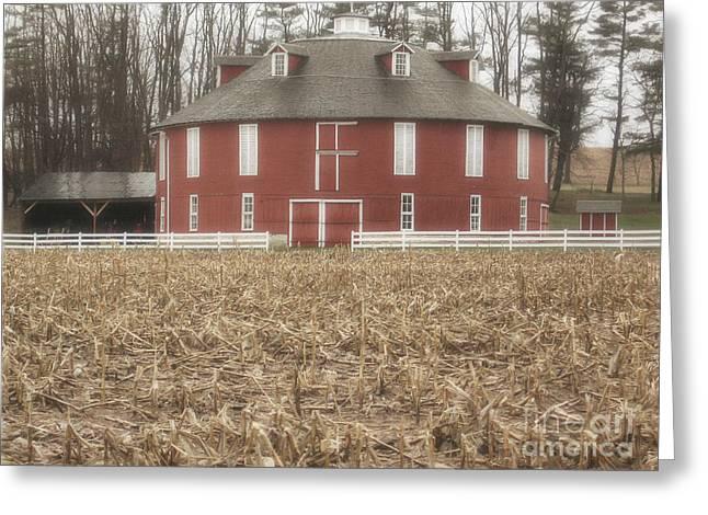 Pennsylvania Barns Greeting Cards - Round Barn Cornfield Greeting Card by Andrea Hazel Ihlefeld
