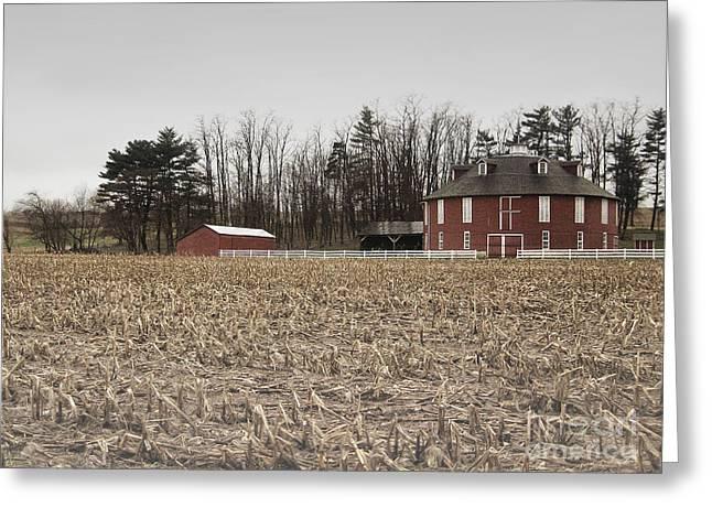 Pennsylvania Barns Greeting Cards - Round Barn Farm Greeting Card by Andrea Hazel Ihlefeld