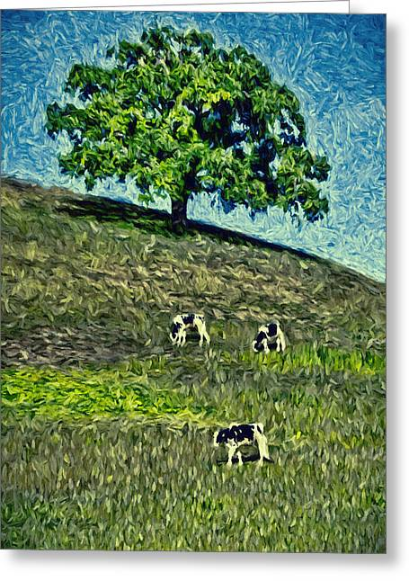 Sonoma County Digital Greeting Cards - Round Hill Tree Greeting Card by John K Woodruff
