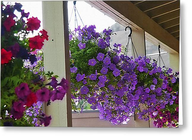 Overhang Digital Art Greeting Cards - Row of Flower Baskets Greeting Card by Steve Ohlsen