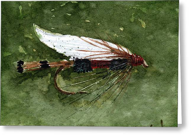 Royal Coachman Wet Fly Greeting Card by Sean Seal