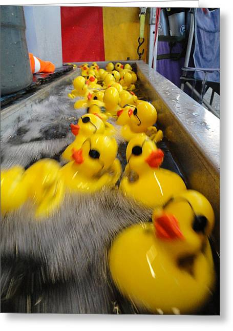 Fun Fair Greeting Cards - Rubber Duckies Greeting Card by Trish Hale