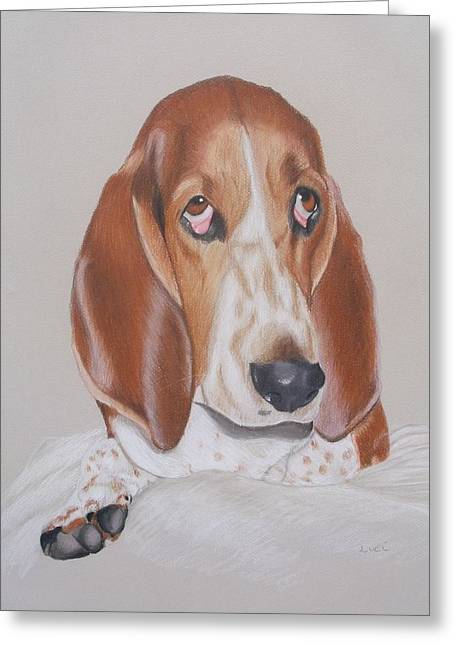 Basset Drawings Greeting Cards - Ruby Greeting Card by Luci Garten