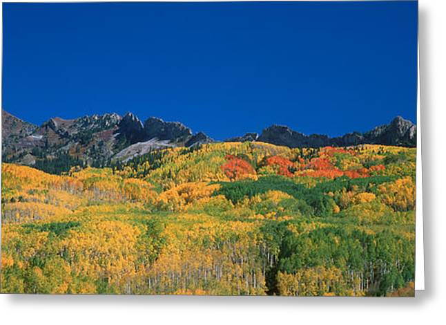 Ruby Range Color Of Fall Greeting Card by Dusty Demerson