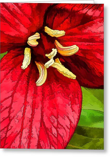 Floral Digital Art Digital Art Greeting Cards - Ruby Red Trillium Greeting Card by Bill Caldwell -        ABeautifulSky Photography