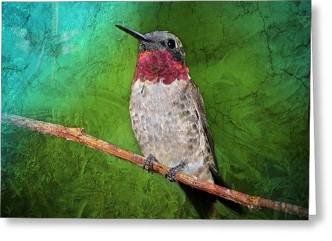 Ruby Greeting Cards - Ruby Throated Hummingbird Greeting Card by Betty LaRue