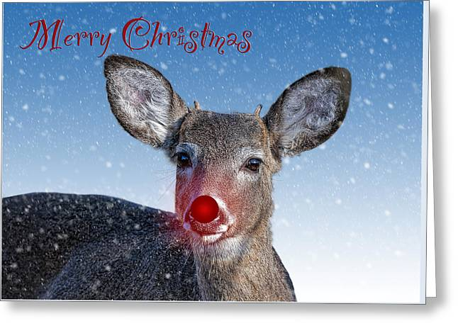 Rudolph Merry Christmas Card Greeting Card by Shara Lee