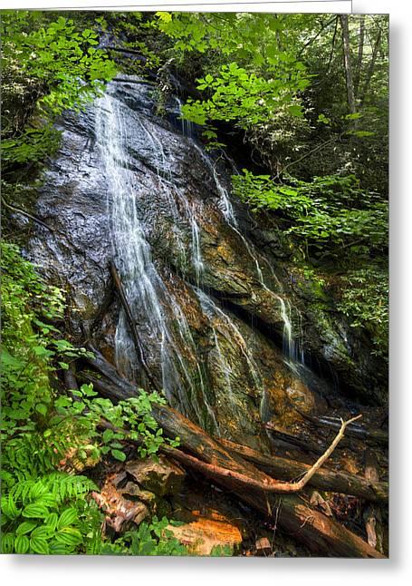 Autumn Leaf On Water Greeting Cards - Rufus Morgan Falls Greeting Card by Debra and Dave Vanderlaan