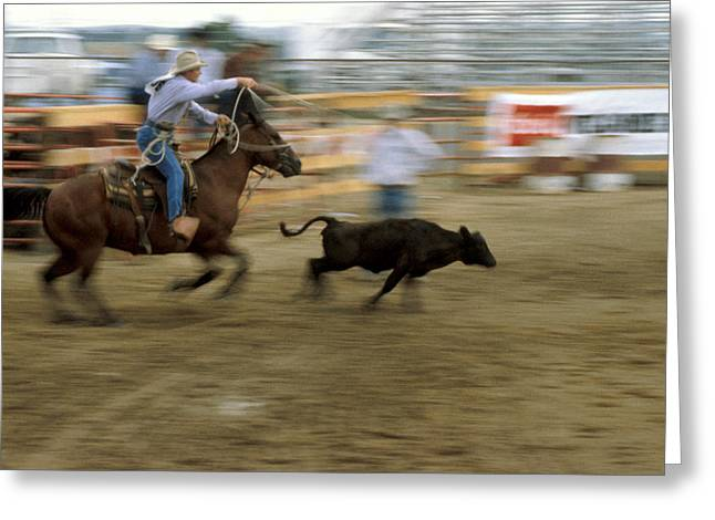 Roping Horse Greeting Cards - Run Little Doggie Greeting Card by Jerry McElroy