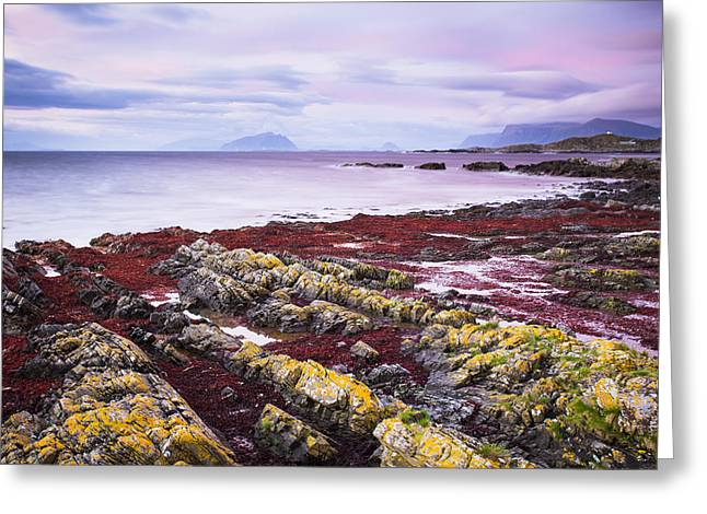 Stones Photographs Greeting Cards - Runde Island Greeting Card by Martin Zorn