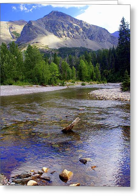 Marty Koch Greeting Cards - Running Eagle Creek Glacier National Park Greeting Card by Marty Koch