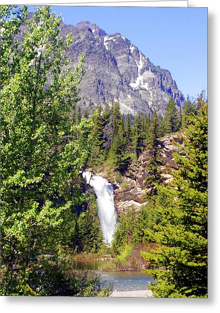 Marty Koch Greeting Cards - Running Eagle Falls Glacier National Park Greeting Card by Marty Koch