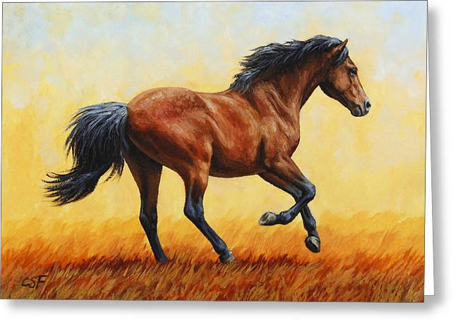 Wild Horses Paintings Greeting Cards - Running Horse - Evening Fire Greeting Card by Crista Forest