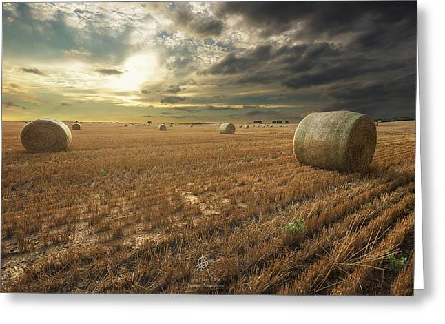 Summer Storm Greeting Cards - Runs Out Of Rain Greeting Card by Aaron J Groen