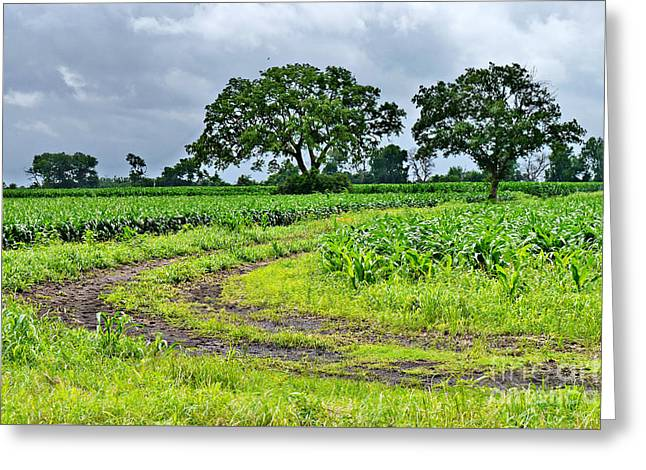 Grey Clouds Greeting Cards - Rural Beauty Greeting Card by Gary Richards