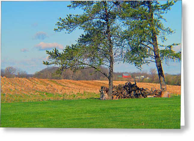 Lawn Chair Greeting Cards - Rural Beauty Greeting Card by Tina M Wenger