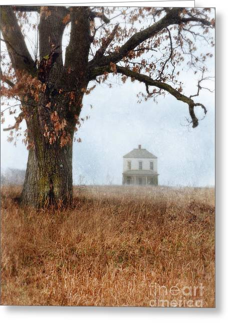 Rural Farmhouse And Large Tree Greeting Card by Jill Battaglia