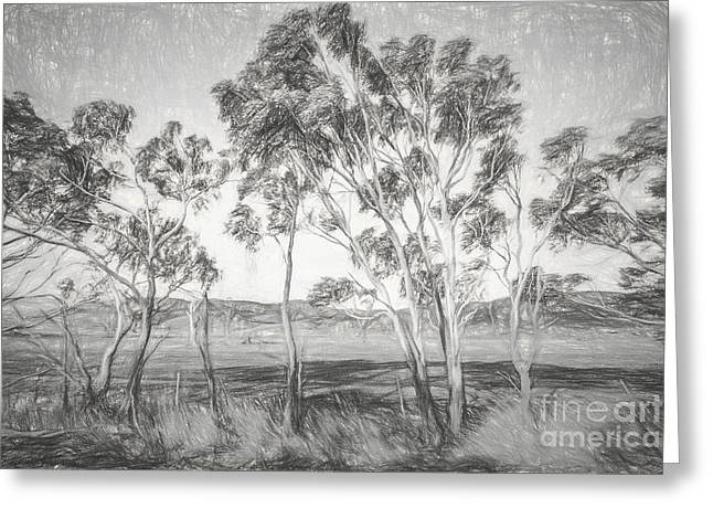 Rural Landscape Pencil Sketch Greeting Card by Jorgo Photography - Wall Art Gallery