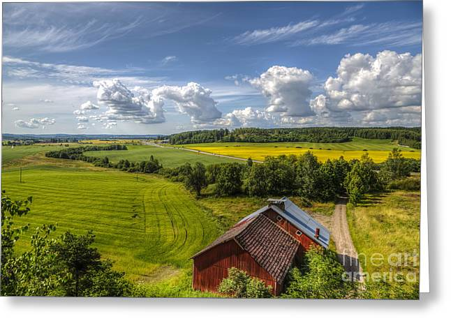 Path Greeting Cards - Rural Landscape Greeting Card by Veikko Suikkanen