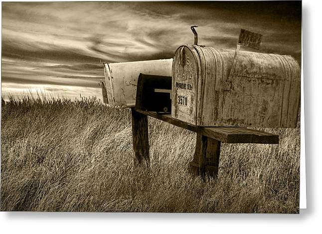 Brown Toned Art Greeting Cards - Rural Mailboxes in Sepia Greeting Card by Randall Nyhof
