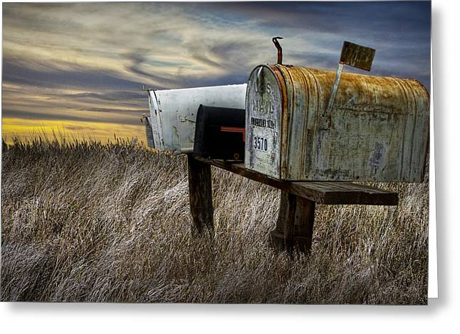Randy Greeting Cards - Rural Mailboxes on the Prairie Greeting Card by Randall Nyhof