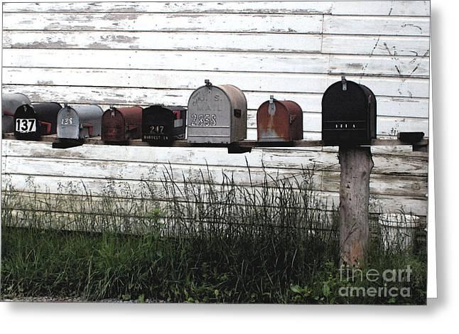 Arkansas Greeting Cards - Rural Mailboxes Greeting Card by Steve Grisham