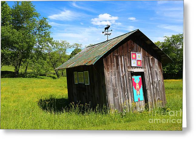 Rural Panache Greeting Card by Marty Fancy