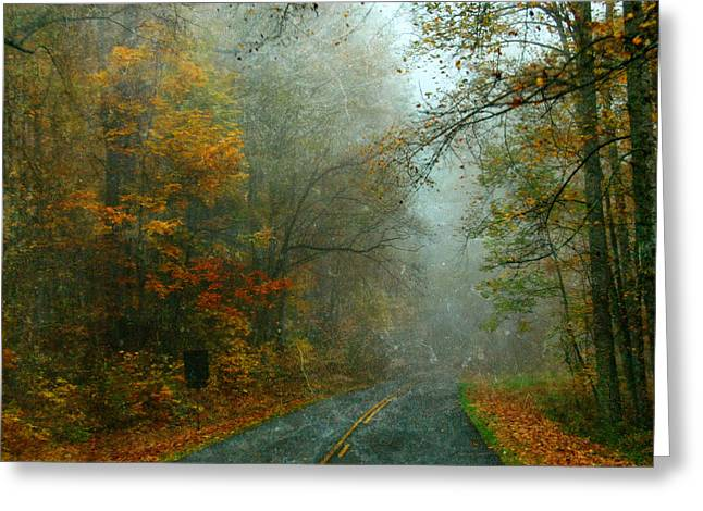 Mountain Road Greeting Cards - Rural Road in North Carolina with Autumn Colors Greeting Card by Jill Battaglia