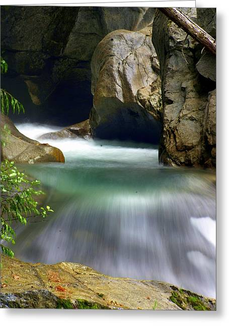 Marty Koch Greeting Cards - Rushing Water Greeting Card by Marty Koch
