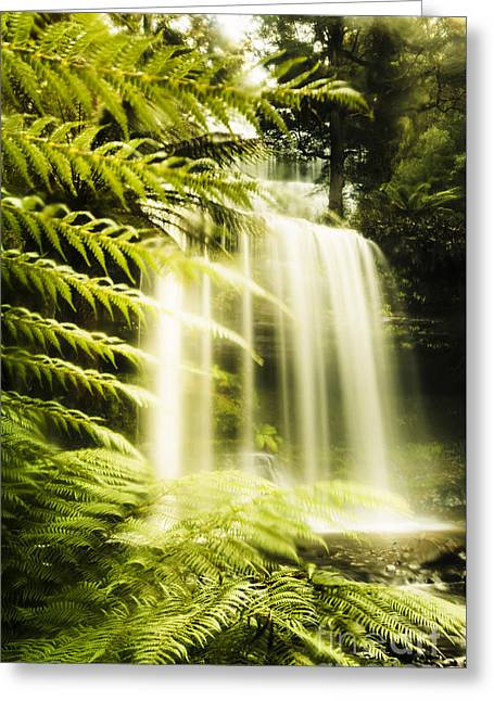 Russell Falls Background Greeting Card by Jorgo Photography - Wall Art Gallery