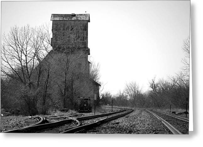 Jame Hayes Photographs Greeting Cards - Russell Grain Greeting Card by Jame Hayes
